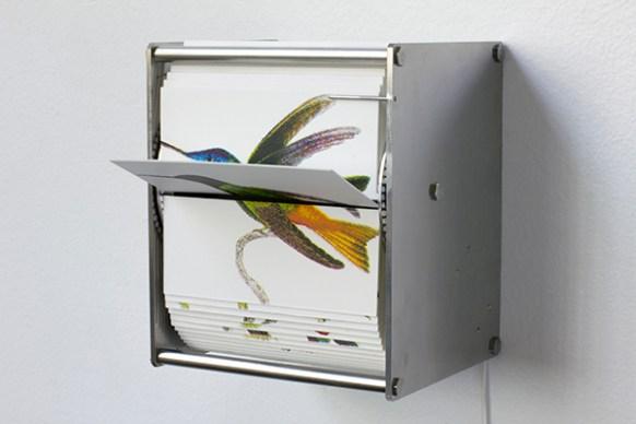 69_ornithologyi3600