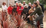 Cursos de jardineria para mayores en Torrelodones