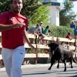 Encierros Fiestas de Hoyo de Manzanares 5