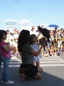 El 3 de junio 2012 habrá una Exhibición de aves en Verdecora Torrelodones