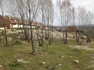"Zona ""Arroyo del Coronel"" en el AHS (Foto: Ayto. de Torrelodones)"
