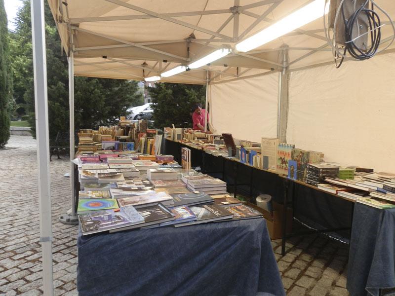 I Feria del Libro Viejo y de Ocasión de Hoyo de Manzanares