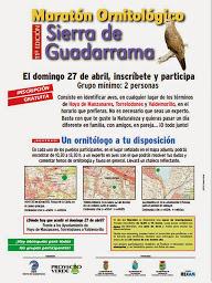 XI Maratón Ornitológico Sierra de Guadarrama
