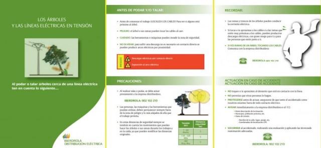 Los árboles y las líneas eléctricas (Iberdrola Distribución). Seguridad en podas y talas