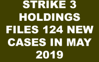 Strike 3 Holdings v Doe