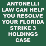 Strike 3 Holdings in Florida