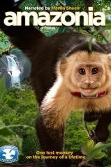 Amazônia Thumb