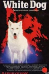 Cão Branco Thumb