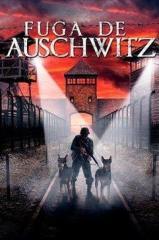 Fuga de Auschwitz Thumb