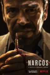 Narcos: 3ª Temporada Completa Dublado WEBRip 720p 1080p Thumb