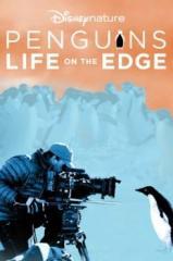 Pinguins: Vida ao Extremo Thumb