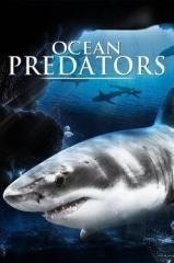 Predadores Perigosos: Os Mais Temidos Dos Oceanos Thumb