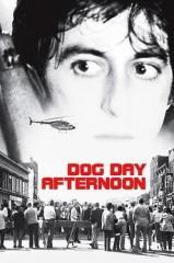 Um Dia de Cão Thumb