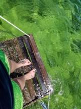 02 Danger Charters - TORsAdventures Portfolio Media - Key West FL Florida - OffShore Kayaking