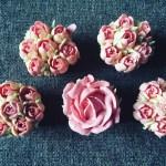 5 TIPP cupcake díszítéshez, hogy te is PROFI legyél!