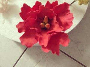 piros-fantazia-rozsa-tortaiksola-1 (3)