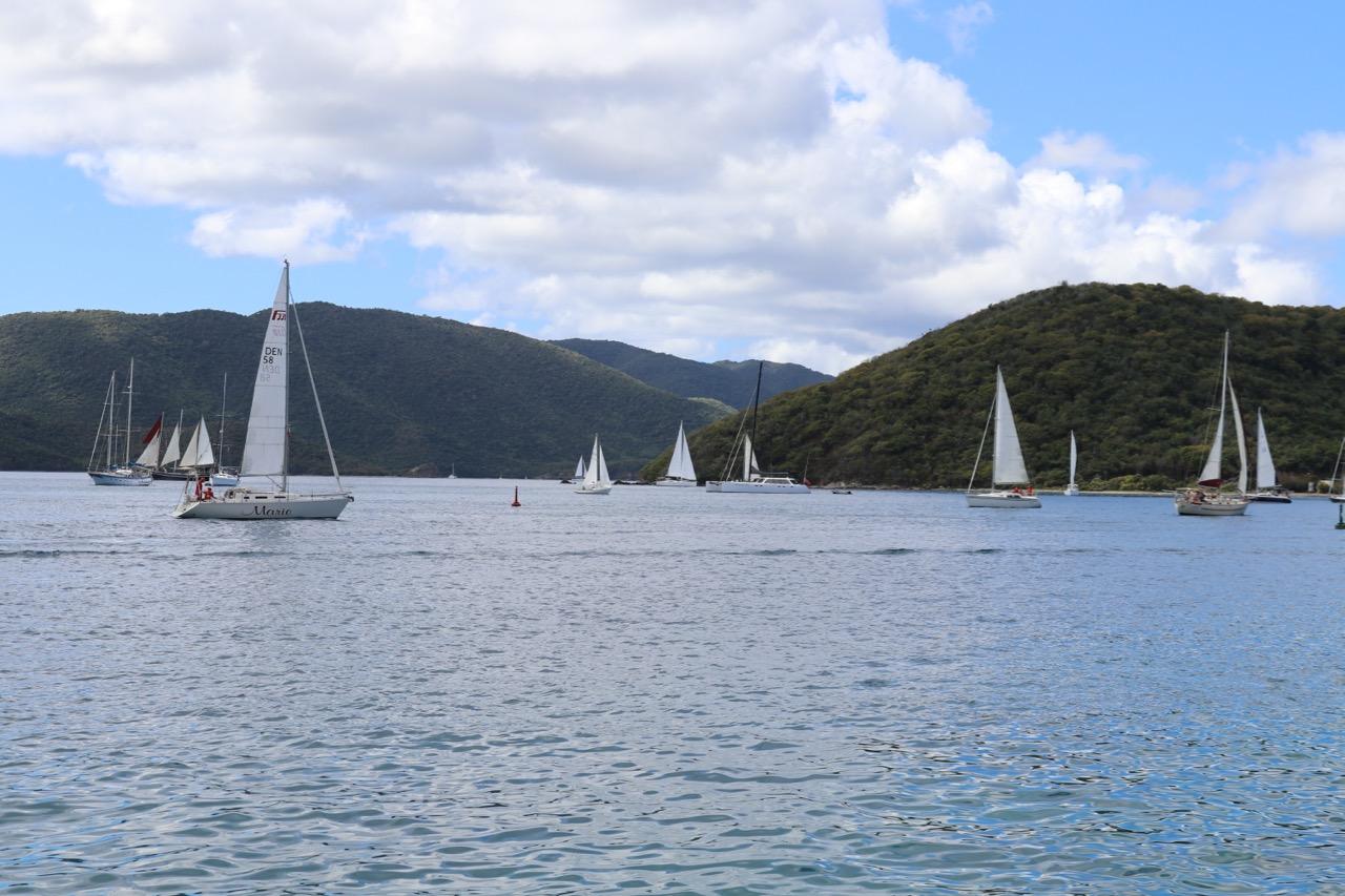 sail boats tortola