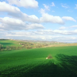 Panorama dalla Rampina