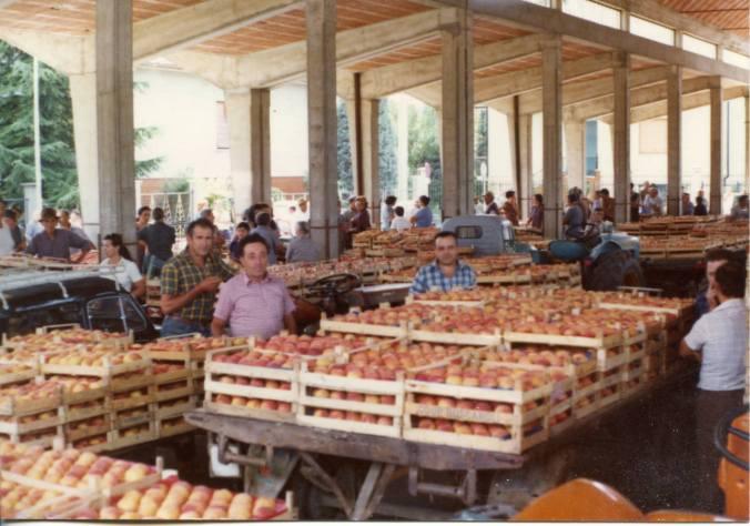 La foto (anni settanta) si riferisce al mercato delle pesche a Viguzzolo . ormai chiuso da diversi anni, essendo tutto convogliato a Monleale, Al centro della foto, in secondo piano, il maestro Marini, allora sindaco di Viguzzolo.