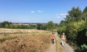 Mattinata pedo-ciclabile – La Pieve di Viguzzolo sarà raggiunta anche a piedi