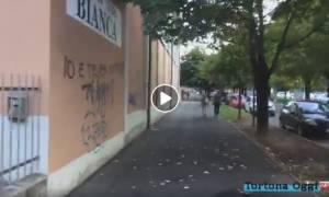 Il Caso Palestra Bianca – Sono italiani i vandali