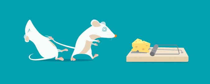Trappola per topi, immagine di copertina di un articolo contro il click baiting