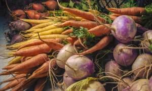 Walter Ottria esprime soddisfazione per la Legge quadro sull'agricoltura in Piemonte