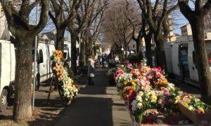 Tortona – La città sotto assedio frena il commercio, gravi perdite al mercato di piazza Milano