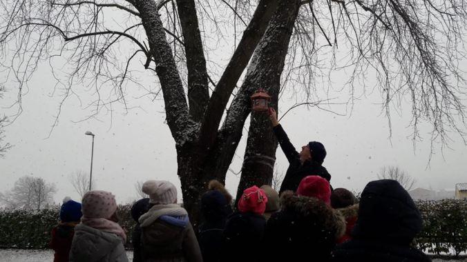 Valter Ponta indica come utilizzare le casette sugli alberi