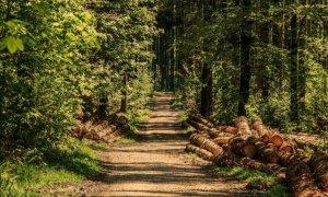 Un altro passo verso il Parco Naturale dell'Alta Val Borbera