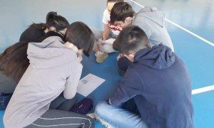 I Promessi Sposi studiati per gioco al Liceo Peano