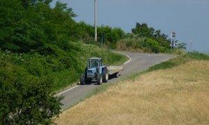 L'Italia è leader in Europa per valore della produzione agricola e numero di occupati