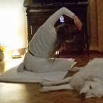 Tortona è viva nonostante il Coronavirus, le lezioni di Yoga si fanno in remoto