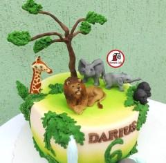 tort-animale-africa3