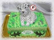 tort pui de tigru alb 2