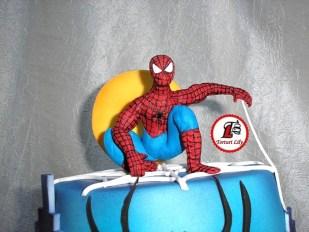tort spiderman etajat 5