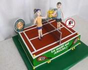 tort tenis 3