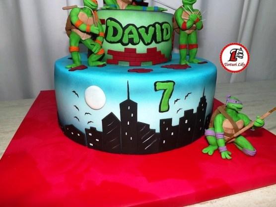 tort-testoase-ninja_ninja-turtles-00_david-_4