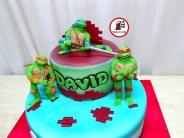 tort-testoase-ninja_ninja-turtles4-david-_4