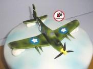 tort world of warplanes 36