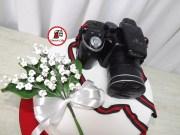 tort-aparat-foto-06