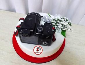 tort-aparat-foto-07