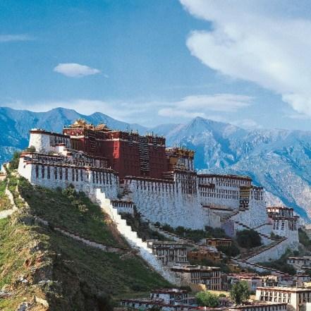 チベット2 (800x800)