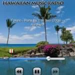 ハワイアンを聴いてボーっとする