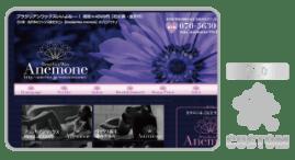 Wax Anemone-ameblo_金沢,アメブロ,カスタマイズ,カスタム,フルカスタマイズ,toru chang
