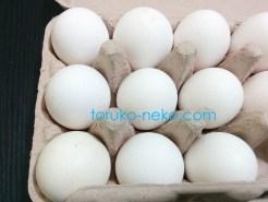トルコで白い卵が9つ紙パックに入っている画像 写真 トルコ イスタンブール 猫歩き