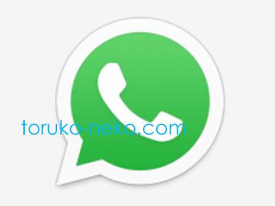 トルコで使われているメッセージ アプリ WhatsAppのロゴの画像