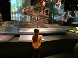 Tory and dad go to the Science Museum in St Paul. This was the dinosaur exhibit.