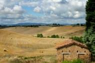 Tuscan landscape mid summer 2011
