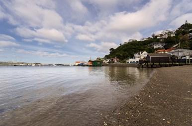 Hataitai Beach and boathouses